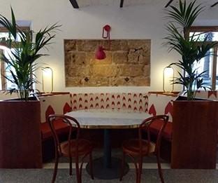 Coffee Shop in Mallorca
